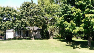 Beautiful home on two large lots for sale in Bayfield. Kitchener / Waterloo Kitchener Area image 2