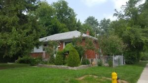 bungalow for rent in north york near yonge and finch