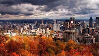 Bonjours! je cherche un travail fixe à Montréal