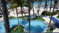 Florida & Aruba Vacation Condo For Weekly Rent: