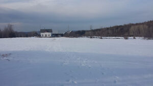 70 acres of hay land for lease in Bancroft area