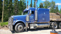 Freightliner Classic - Very good condition
