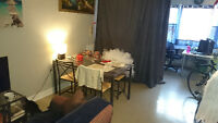 SANDY HILL Bachelor Apt For Rent JAN 1st