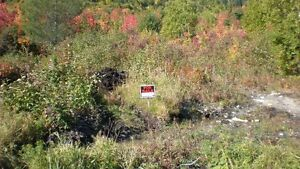 Land for Sale in Benoit's Cove,Bay of Islands ,Nfld