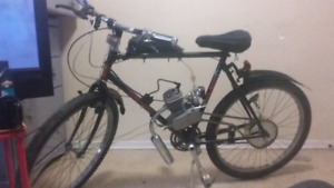 Motorized Raleigh bicycle