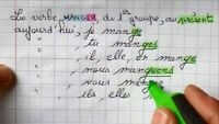 French Tutor to Help You SUCCEED in Gr. 9 - 12 French!