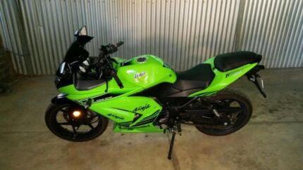 2012 ninja also 2002 ninja both in green