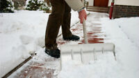 Lacombe Park - Reliable Snow Shoveling for Winter