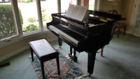 Piano Lessons - Twin Lakes Area