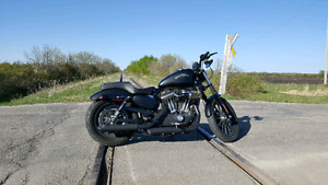 A Must see Harley Davidson  IRON 1200