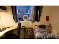 rent falt in Nottingham University