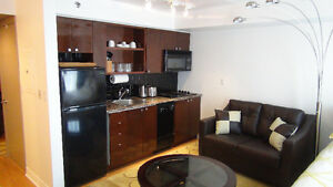 DOWNTOWN – Toronto –Lux. Fully Furnished Studio-From June. 1st