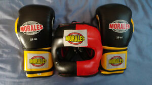 Boxing Gear - Gloves and Sparring Headgear