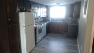 Just Finished!! All Brand New Basement Apartment 2 bed!!!