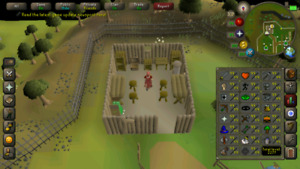 Runescape OSRS Maxed Account for sale