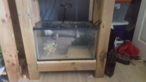 10 gallon fist tank and filter