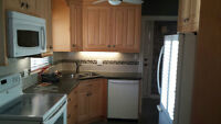 ROOMS FOR RENT--Indian Student Preferred--contact 416-918-0549