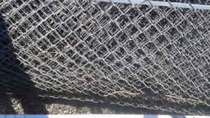 6 Foot Chainlink fencing