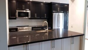 New Black Kitchen Cabinets, Best price, soft-close, custom