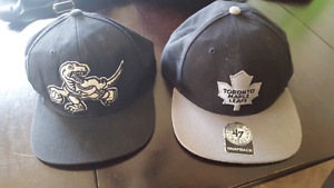 Maple Leafs and Raptors Hats