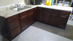 Lower kitchen cabinets,sink and countertop