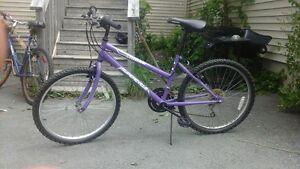 Purple Super Cycle SC1800 For Sale