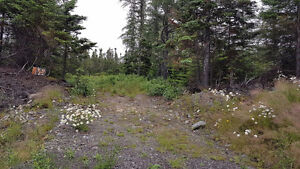 Land in Colinet , Route 91 - Colinet Rd.  One Acre  MLS®1133992 St. John's Newfoundland image 2