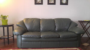 Moving Sale Sofa and Love Seat