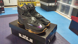 Lebron 13 basketball shoes. Brand new.