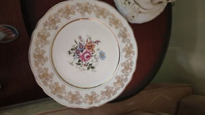 Alfred Meakin Golden Posy China Plates