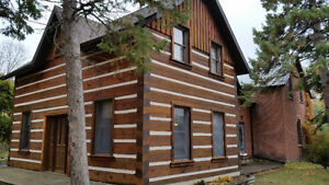LOG HOME CHINKING/RENOVATION (FREE QUOTE)