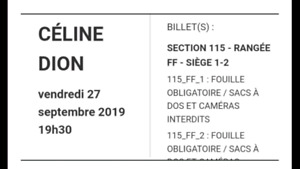 2 Billets Céline Dion vendredi 27 septembre section 115 FF 1-2