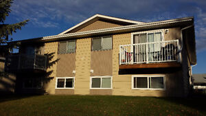 Renovated 2 bedroom 4plex including water near park in Clearview