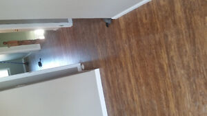 Flooring and small renovations Cambridge Kitchener Area image 4