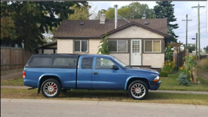 Dodge Dakota (Low Kms)