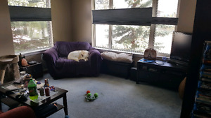 3 bedroom sublet available July 1