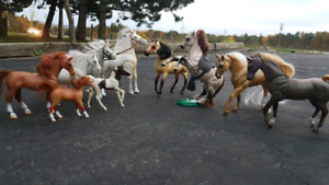 Miniature Horses + Stable