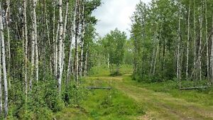 Land for Sale in Rural Lac Ste. Anne County