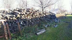 Bois de chauffage frêne et érable 120$ corde de 4 pied de long