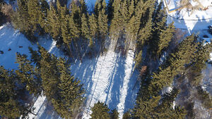 .3 Acre Lot in Red Deer close to River and Heritage Park!