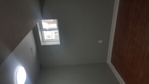 Rooms in a shared basement for rent immediately