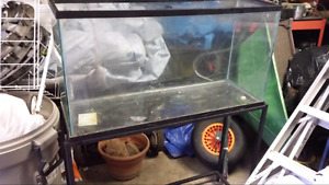33 gallon tank and stand