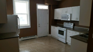 Beautiful newly renovated 1 bedroom apartment