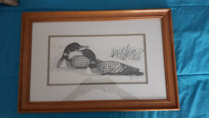 Gorgeous Pen + Ink art, Loons by Tom Spatafore
