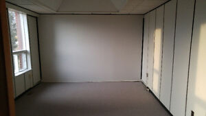 Experienced & Professional Painting Team Residential+Commercial Kingston Kingston Area image 1