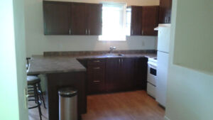 Nicely renovated 2 bedroom upper apartment