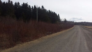 LAND FOR SALE ON BOYD MOUNTAIN IN ELGIN NB