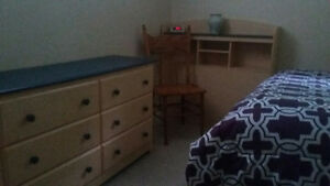 Student Room / Suite For Rent   $600.00/mth.