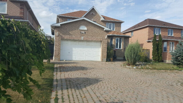 One Bedroom Basement Apartment for Rent in Mississauga ...