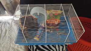 Hampster cage and accessories